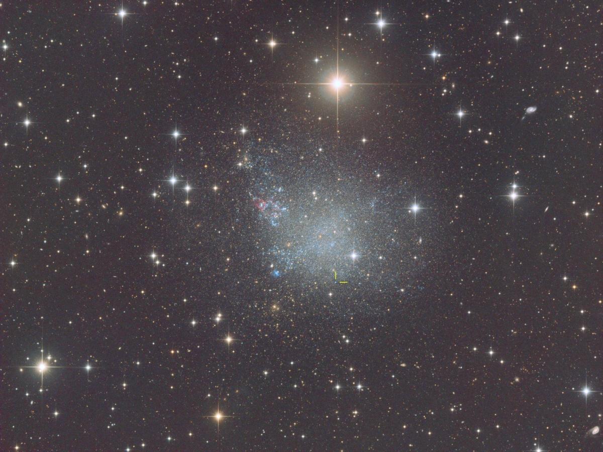 IC1613 XL 07 16 webpage