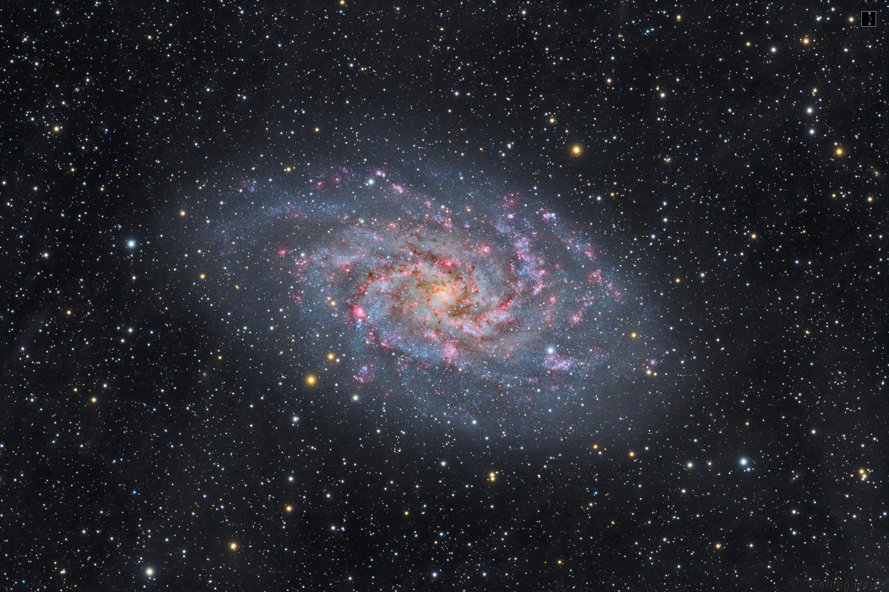 neyer-m33_neu2_kompass